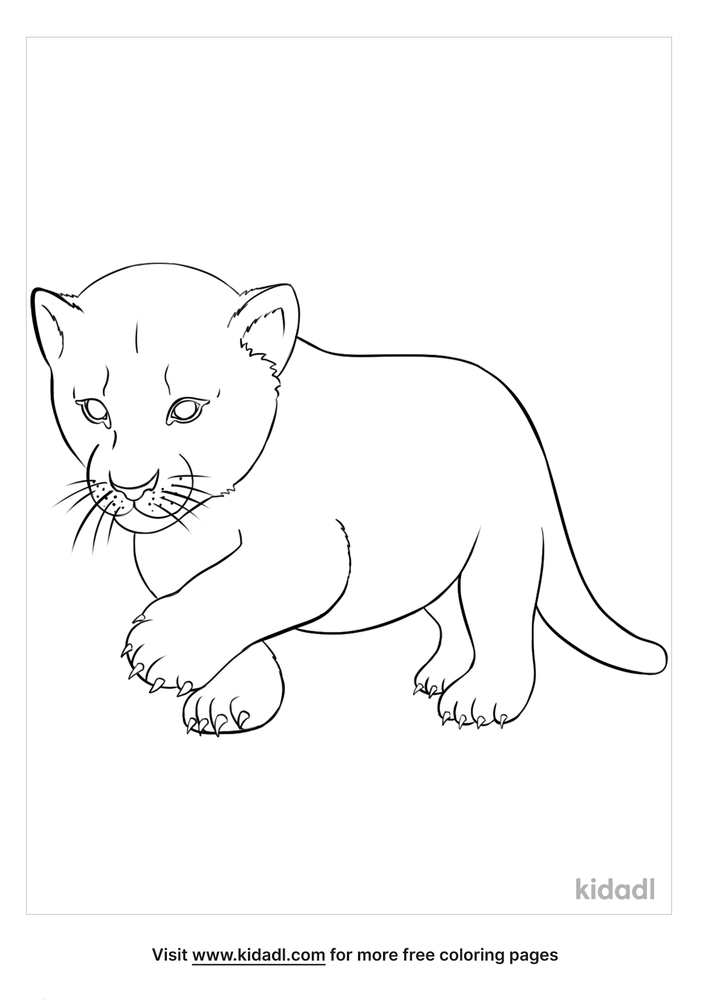 Baby Lion Coloring Pages Free Animals Coloring Pages Kidadl