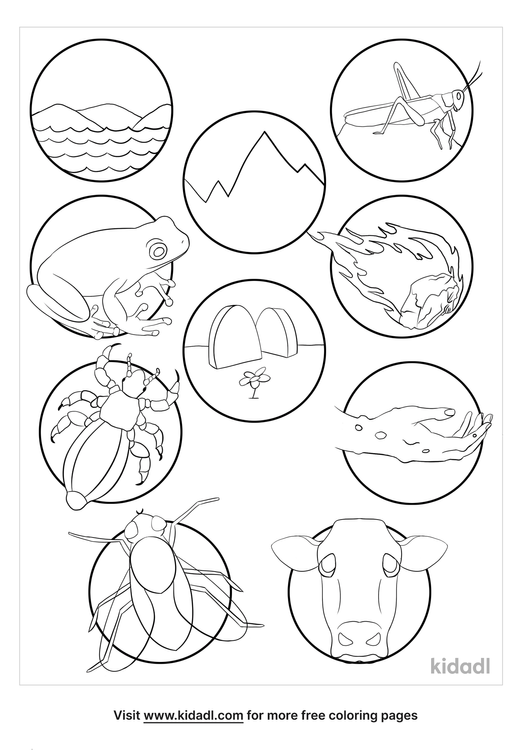 10-plagues-of-egypt-coloring-page.png