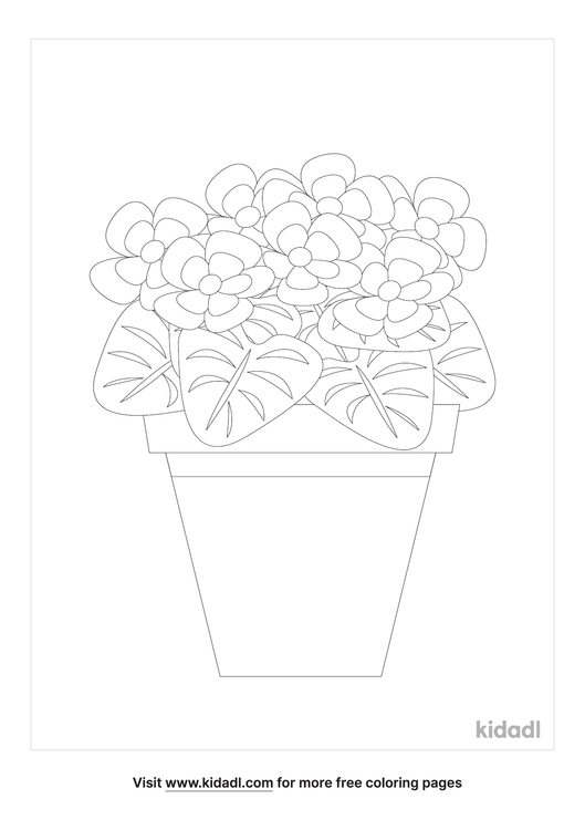 african violet-coloring-pages-1-lg.png