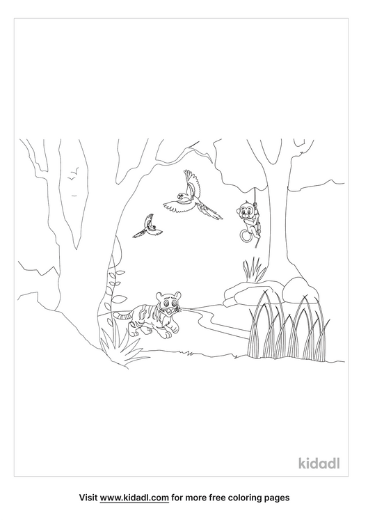 amazon-rain-forest-coloring-page.png.png