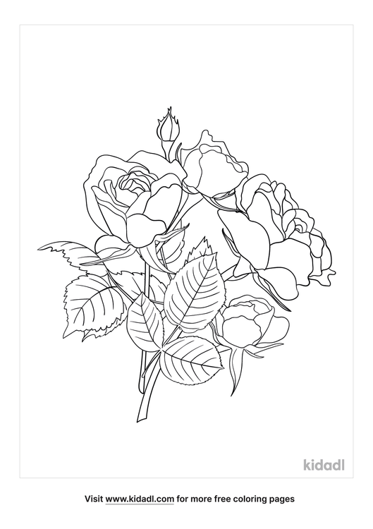 america-climbing-roses-coloring-page-1-lg.png