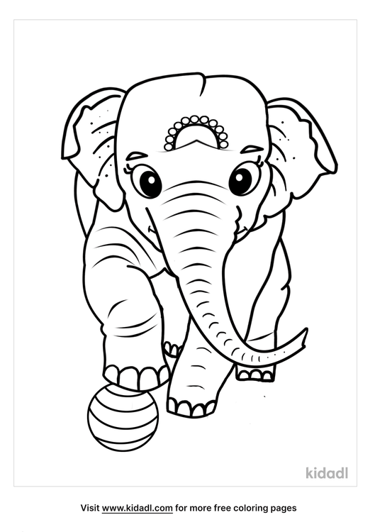 asian elephant coloring page-1-lg.png