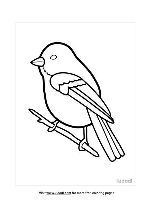 bird coloring pages-1-lg.png