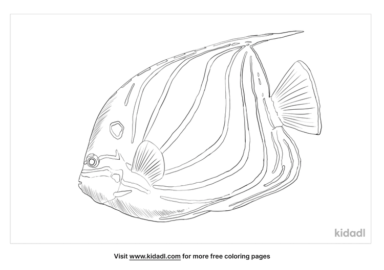 blue-ring-angelfish-coloring-page