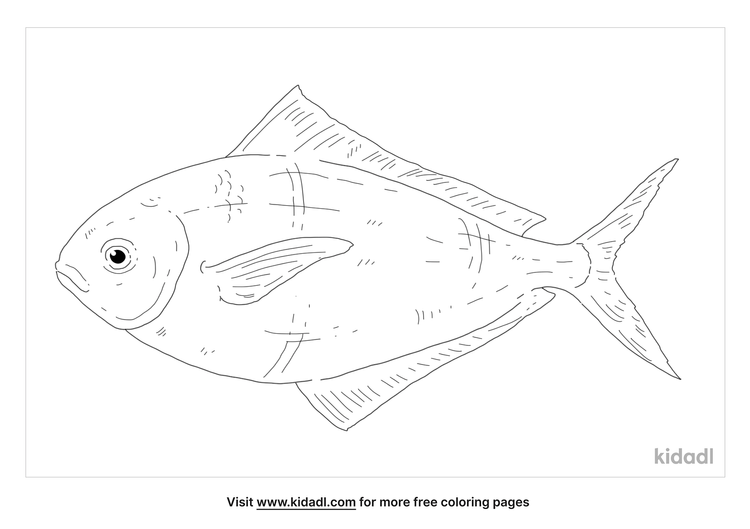 butterfish-coloring-page