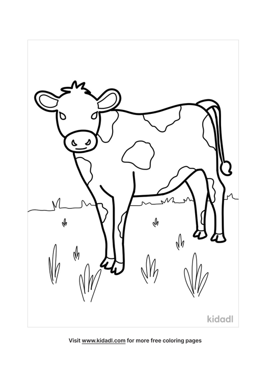 cow coloring pages-1-lg.png