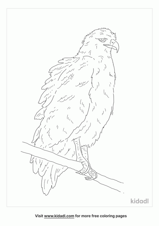 crowned-solitary-eagle-coloring-page