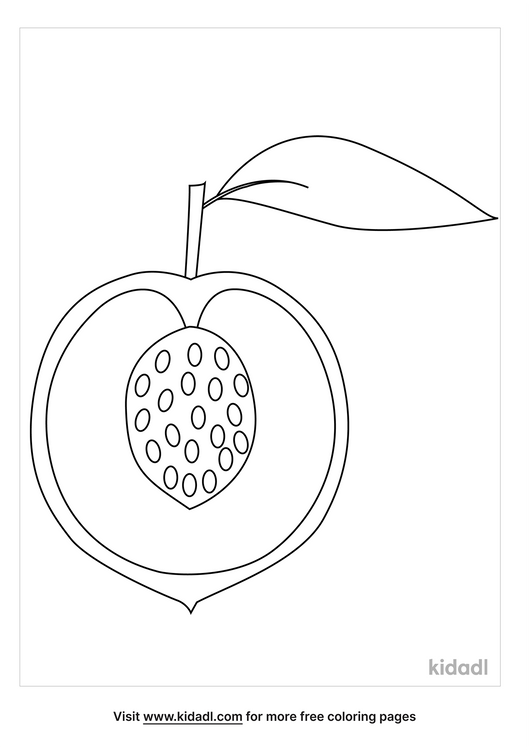 cut-peach-coloring-page.png