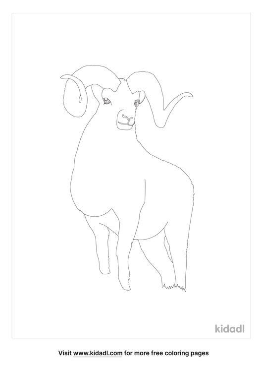 dall-sheep-coloring-pages-1-lg.png