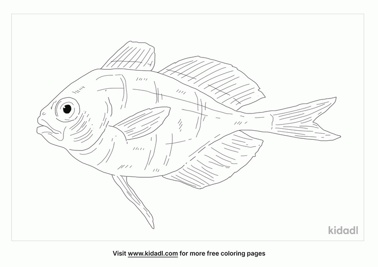driftfish-coloring-page