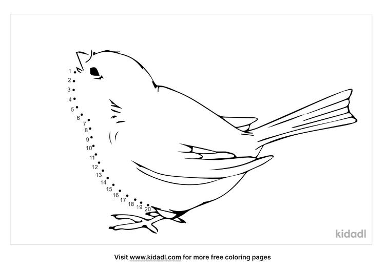 easy-bird-dot-to-dot
