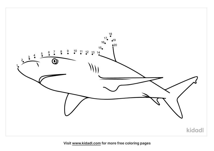 easy-black-tip-shark-dot-to-dot
