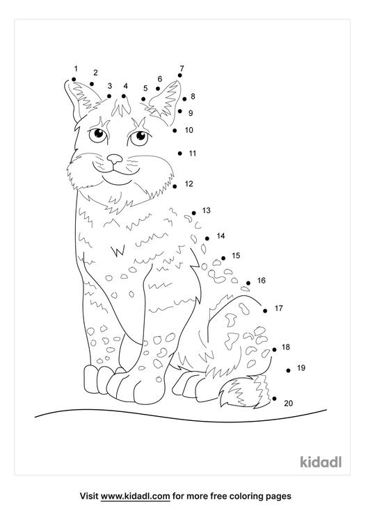 easy-bob-cat-dot-to-dot