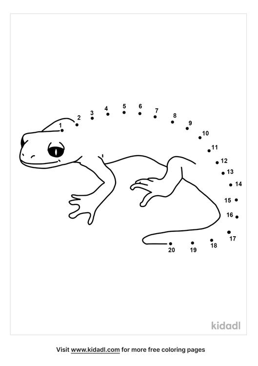 easy-salamander-dot-to-dot