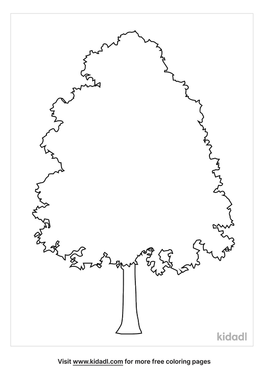 elm-tree-coloring-pages-1-lg.png