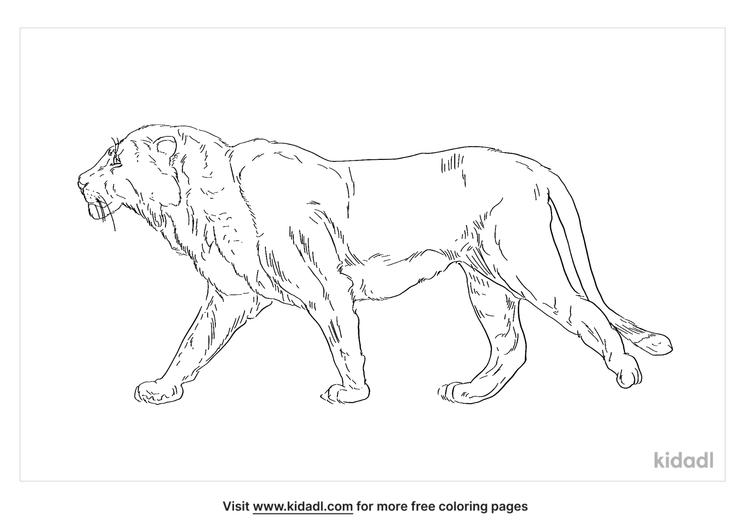 european-cave-lion-coloring-page