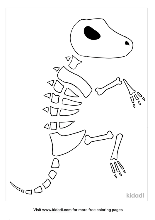 fossil coloring pages_lg.png