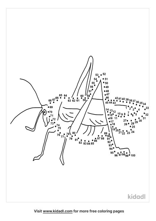 hard-baby-grasshopper-dot-to-dot