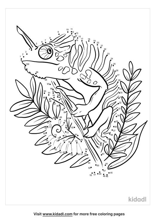 hard-chameleon-in-forest-dot-to-dot