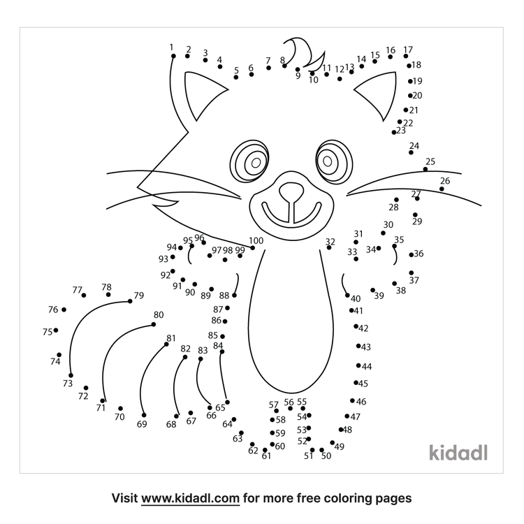 hard-cute-racoon-dot-to-dot