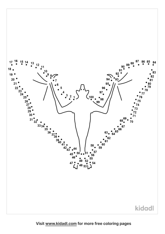 hard-nocturnal-animal-dot-to-dot
