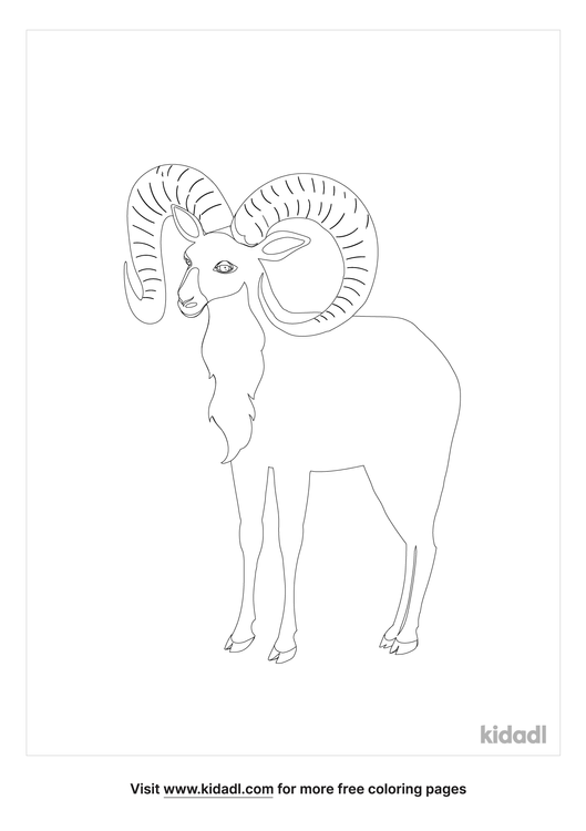 horned-sheep-coloring-page.png
