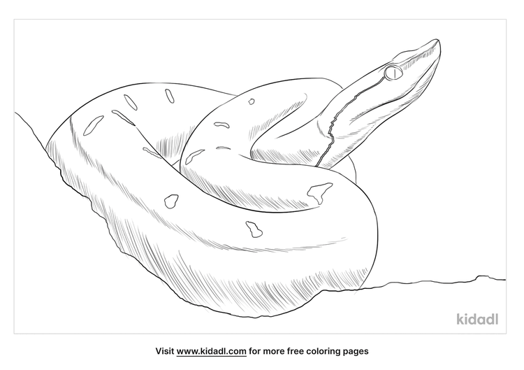 hump-nosed-pit-viper-coloring-page