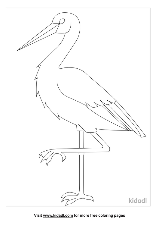 ibis-coloring-page.png