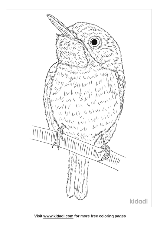 jamaican-tody-coloring-page