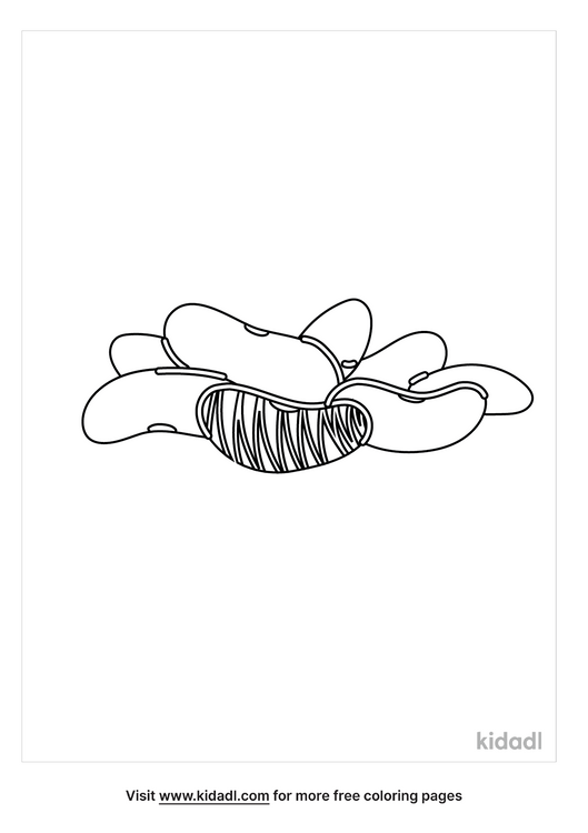 lima-bean-coloring-page.png