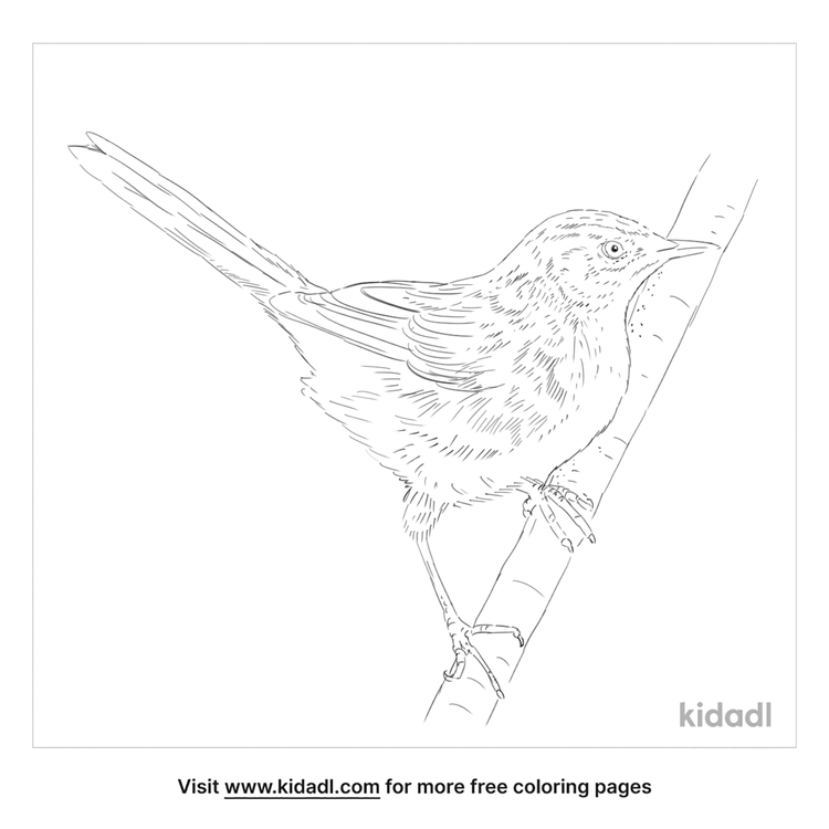 little-grassbird-coloring-page
