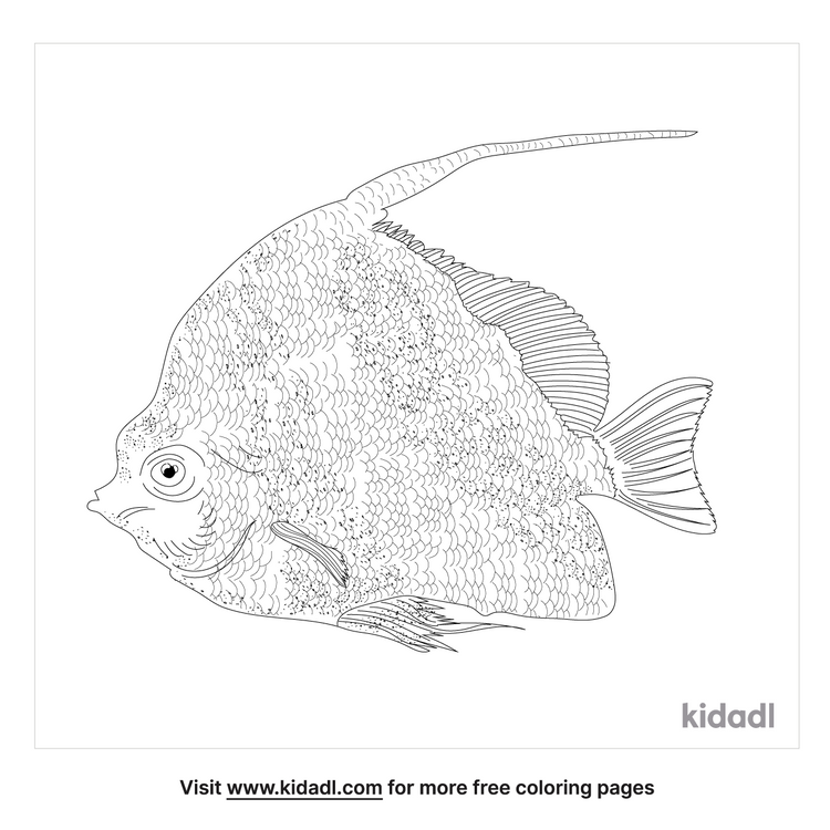 longfin-bannerfish-coloring-page