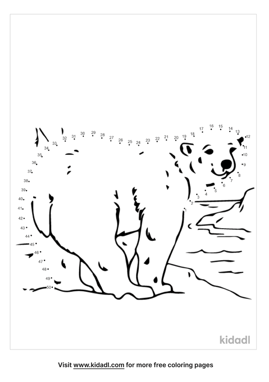 medium-arctic-animal-dot-to-dot