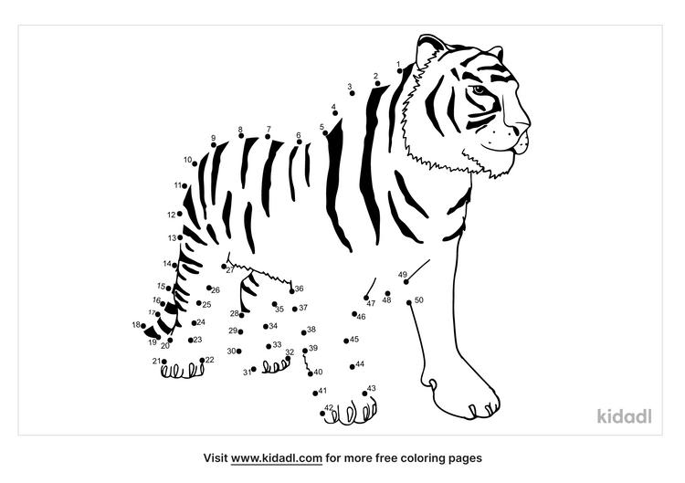 medium-chinese-tiger-dot-to-dot