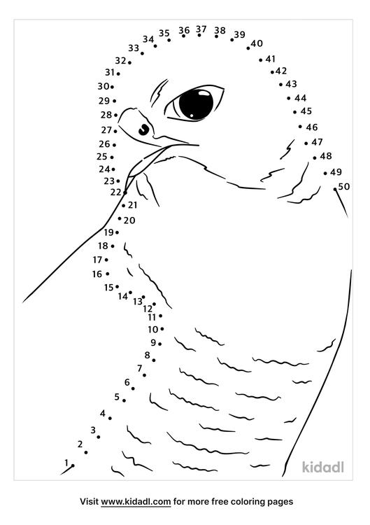 medium-falcon-dot-to-dot