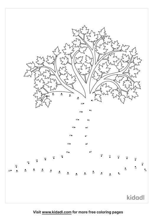 medium-maple-tree-dot-to-dot