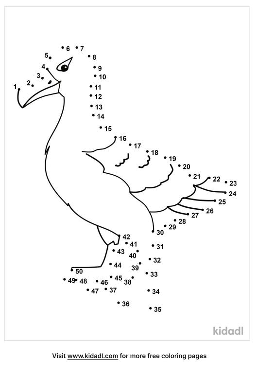 medium-sea-bird-dot-to-dot