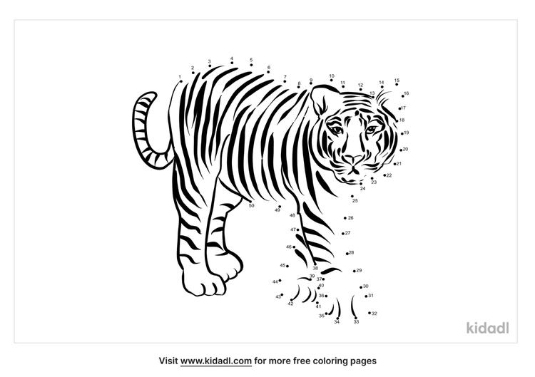medium-tiger-dot-to-dot