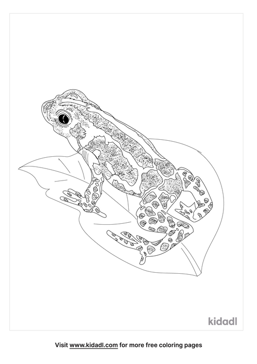 mimic-poison-frog-coloring-page