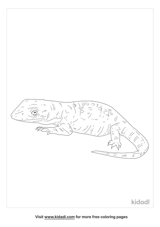 nile-monitor-coloring-page