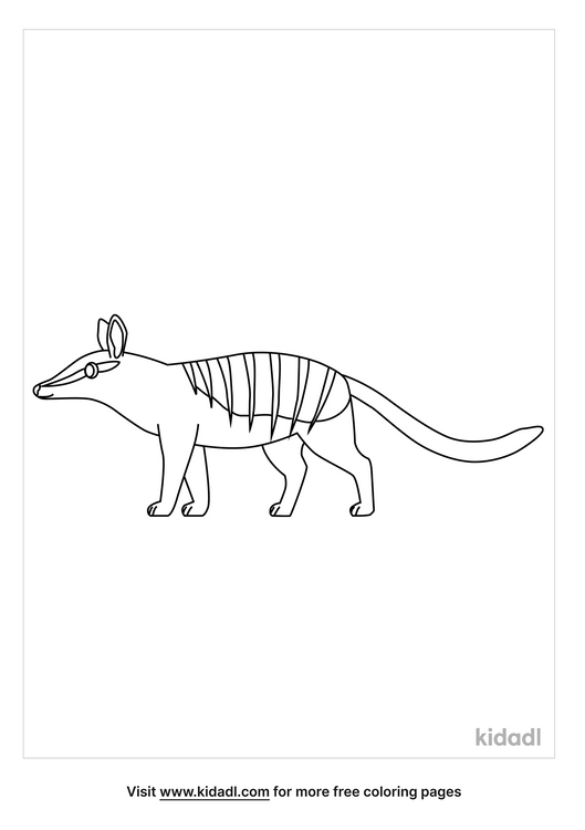 numbat-coloring-pages-1-lg.png