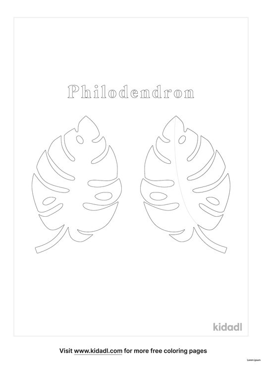 philodendron-coloring-page.png
