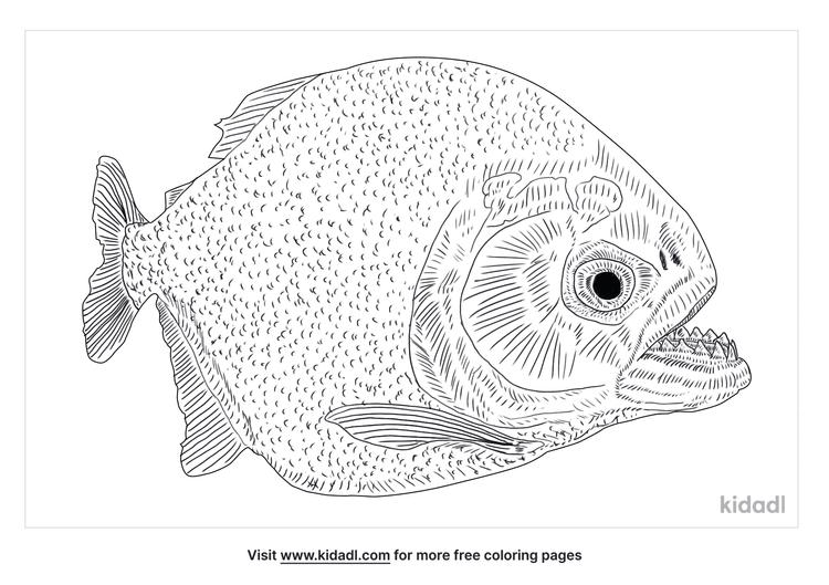 piranha-fish-coloring-page