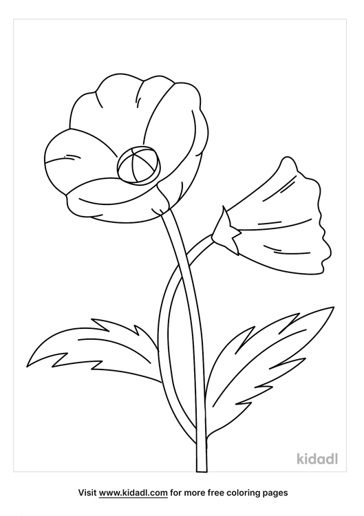 poppy coloring page_1_lg.png