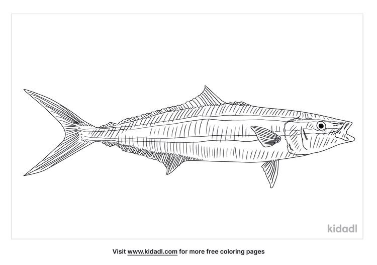 rainbow-runner-coloring-page