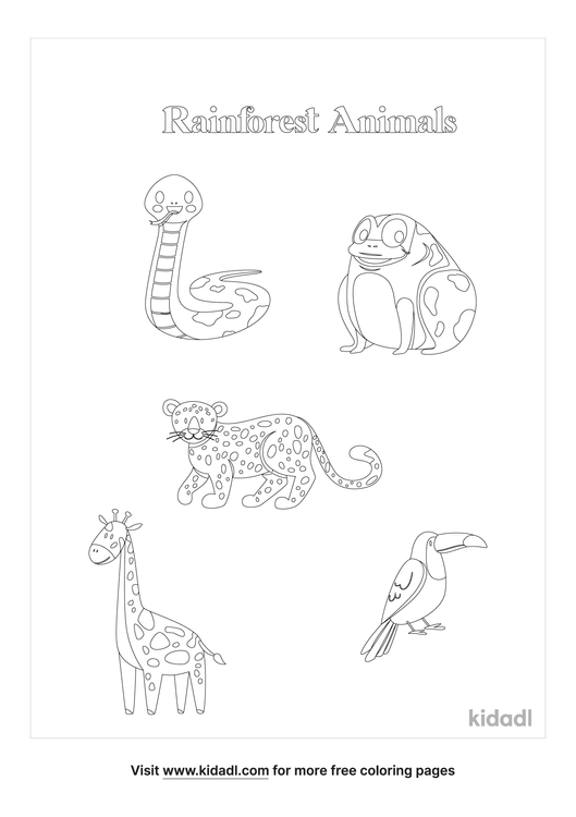 rainforest-animals-coloring-page.png