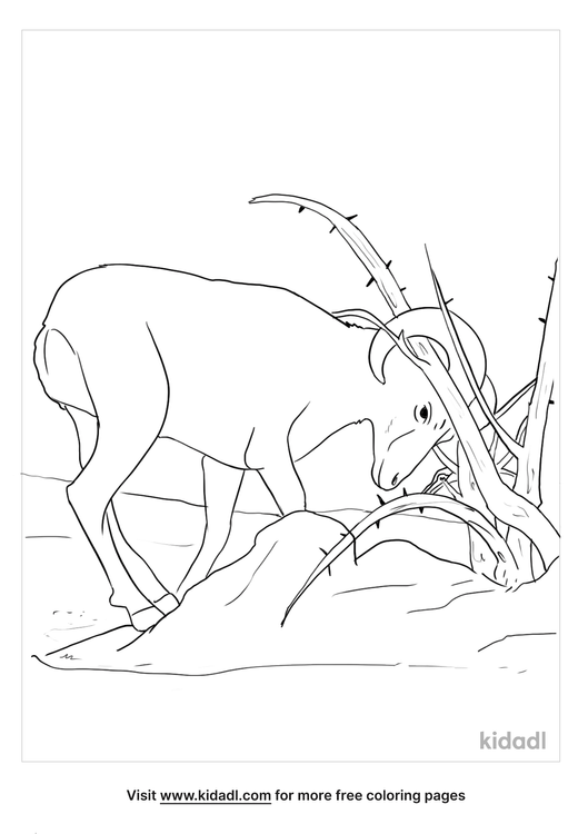 ram-caught-in-the-thicket-coloring-page.png