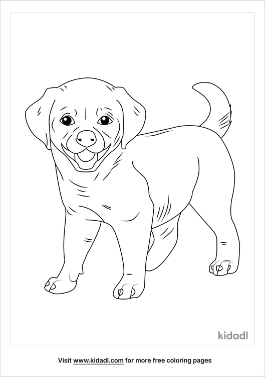 real-puppy-coloring-page.png