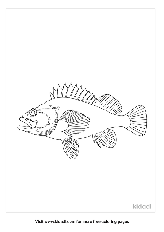 realistic-rock-fish-coloring-page.png