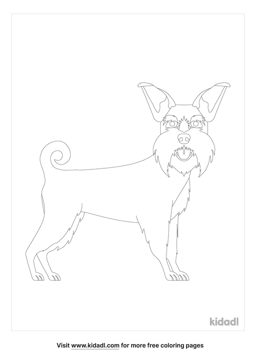 schnauzer-coloring-page.png